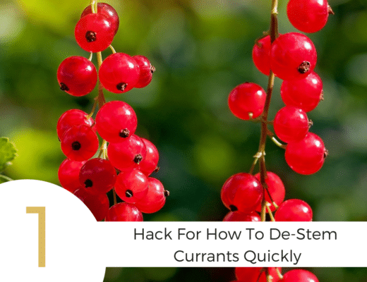Make fast work of getting currants off their stems with this hack for how to de-stem currants quickly. Plus some extra tips and yummy recipes to try!