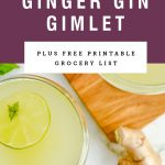 Two glasses of gin gimlet under recipe title on a purple background.