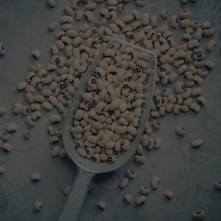 Black overlay on a metal scoop spilling beans.