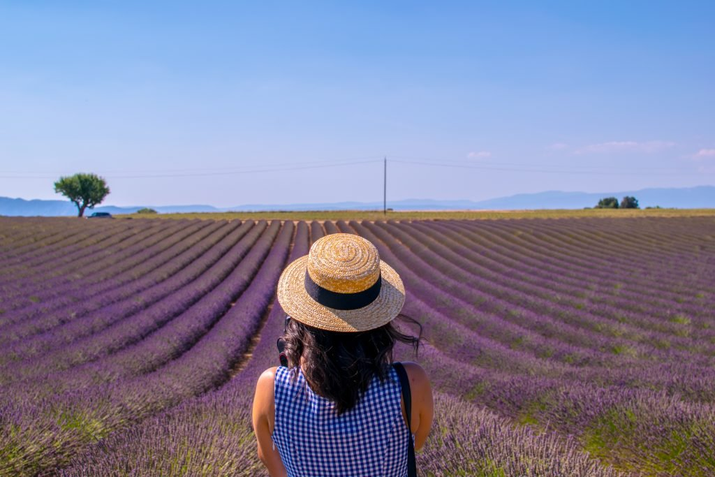 Woman in a straw hat looking at a lavender field.