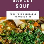 """A purple pot of soup with a purple block above it saying 'vegetable barley soup"""""""